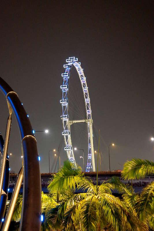 Singapur Flyer bei Nacht.