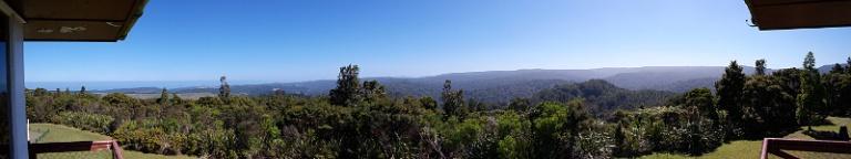 Aussicht über den Kauri Forest