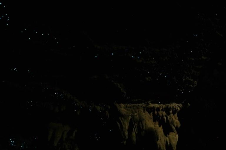 waipu_cave_03