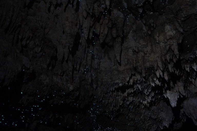 waipu_cave_06