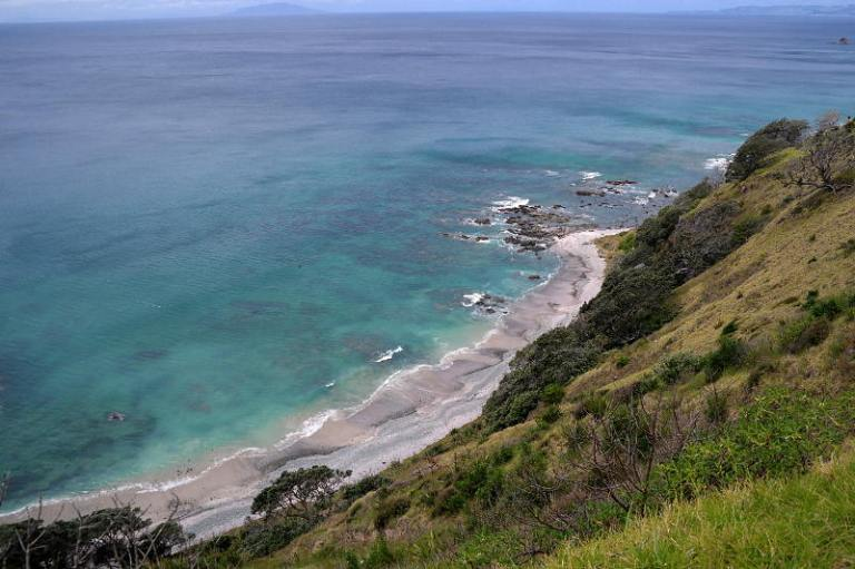 Mangawhai Cliff Top Walk