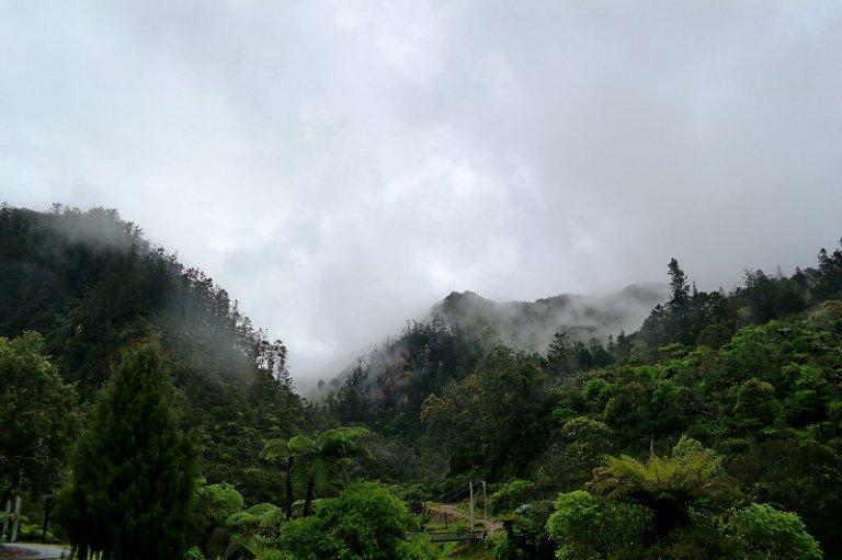 Karangahake-Gorge