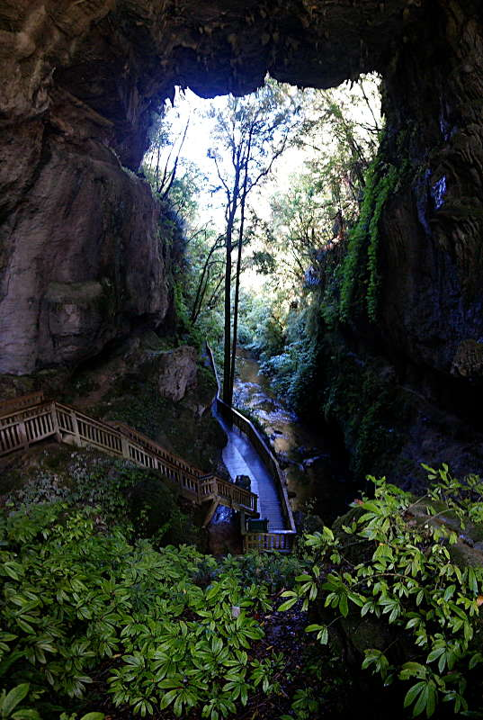 natural_bridge_08