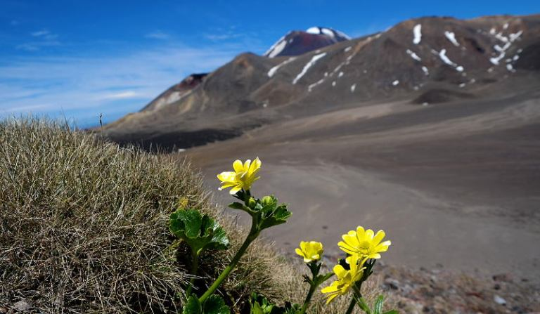tongariro_crossing_30