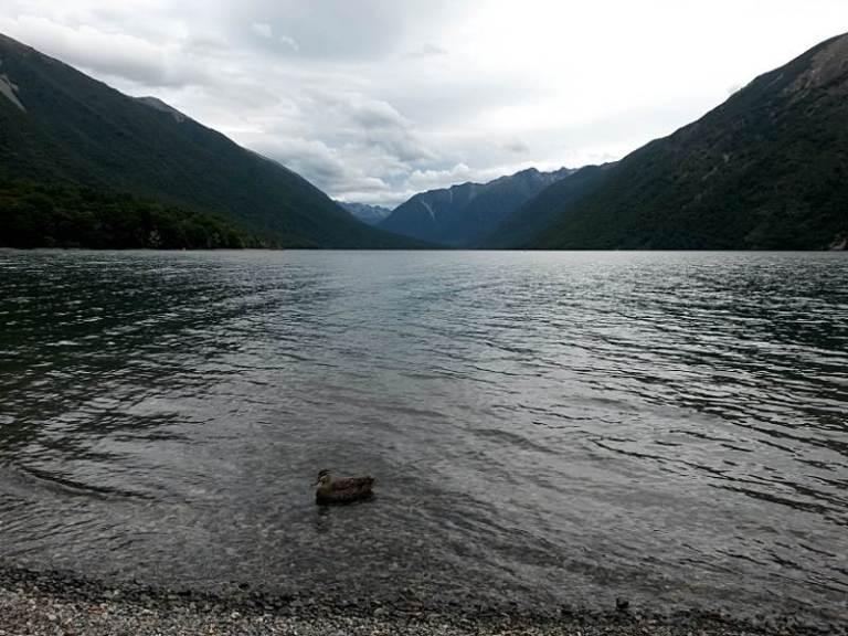 nelson_lakes_kajak_07
