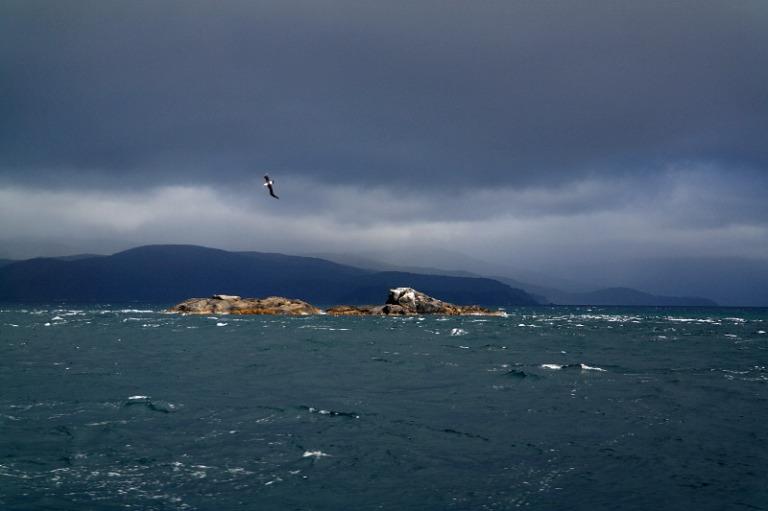 stewart_island_03_fähre_albatross