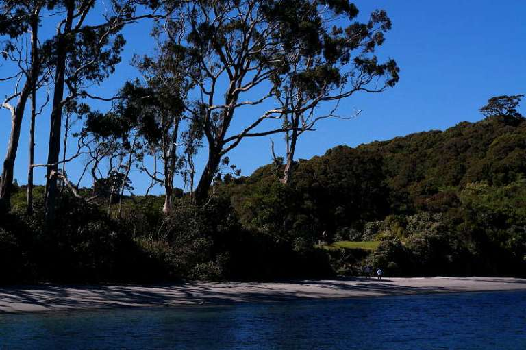 stewart_island_19_william_hut