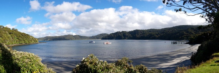stewart_island_21_william_hut_bucht