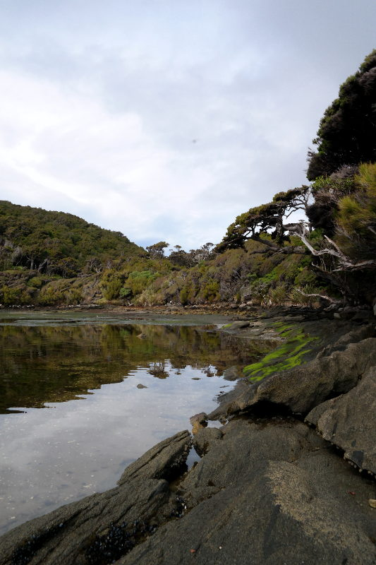 stewart_island_28_north_arm_inlet_03