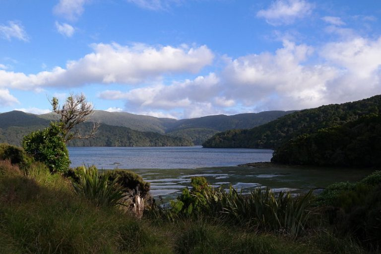 stewart_island_30_north_arm_inlet_05
