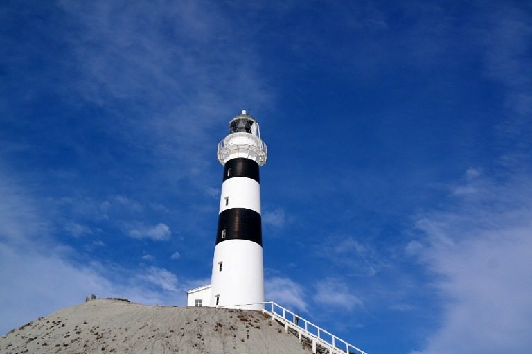 cape_campbell_09