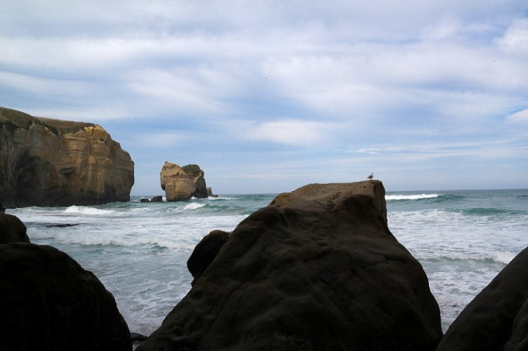 tunnel_beach_dunedin_06