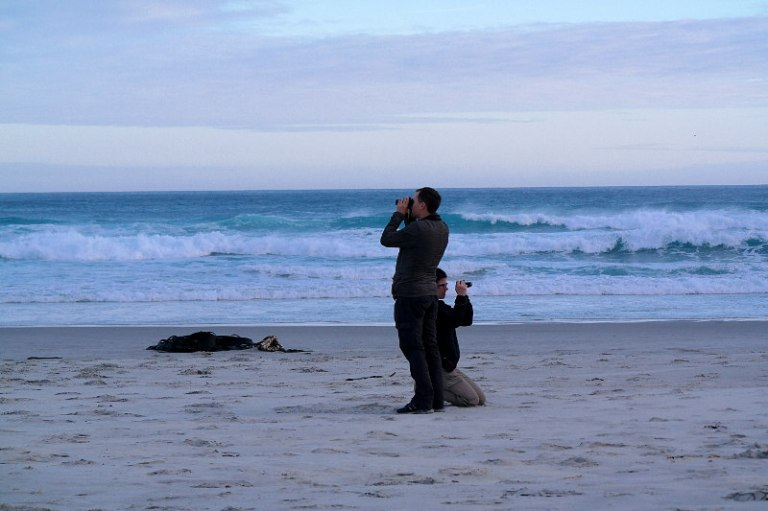 tunnel_beach_dunedin_07