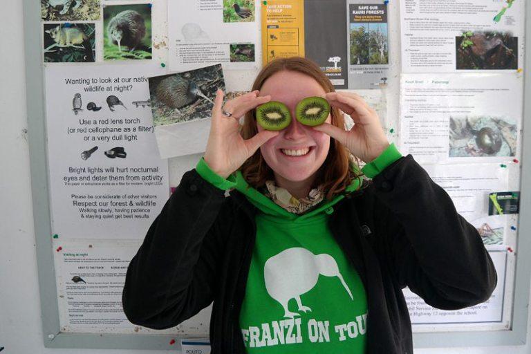 trounson_forest_park_kiwi_watching
