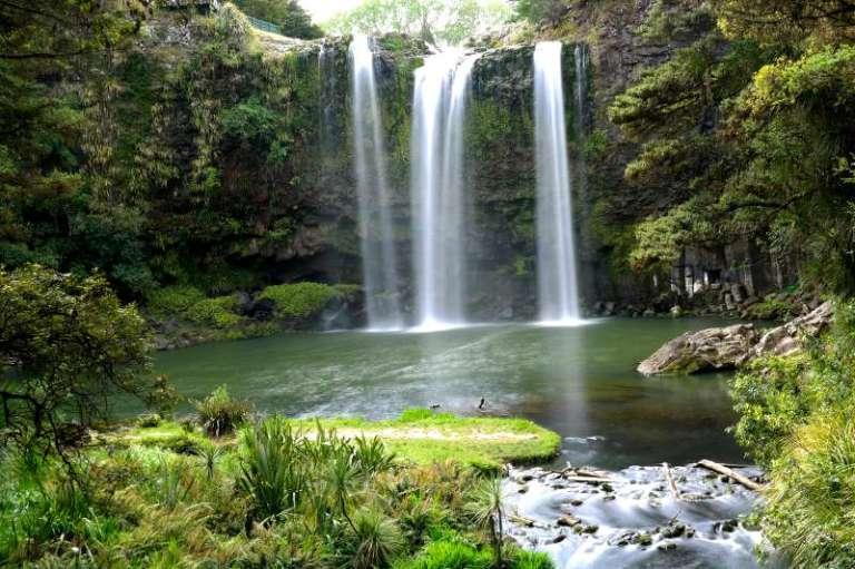 Whangarei Falls Neuseeland