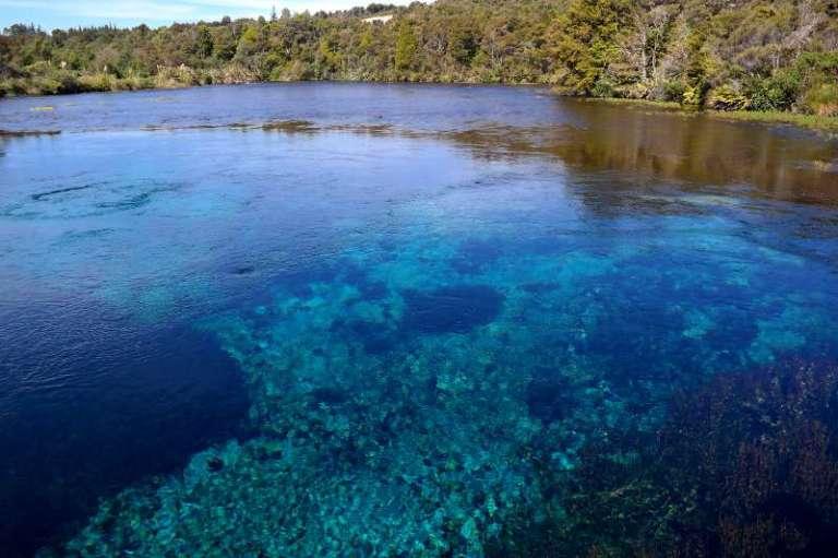 Pupu Springs Neuseeland
