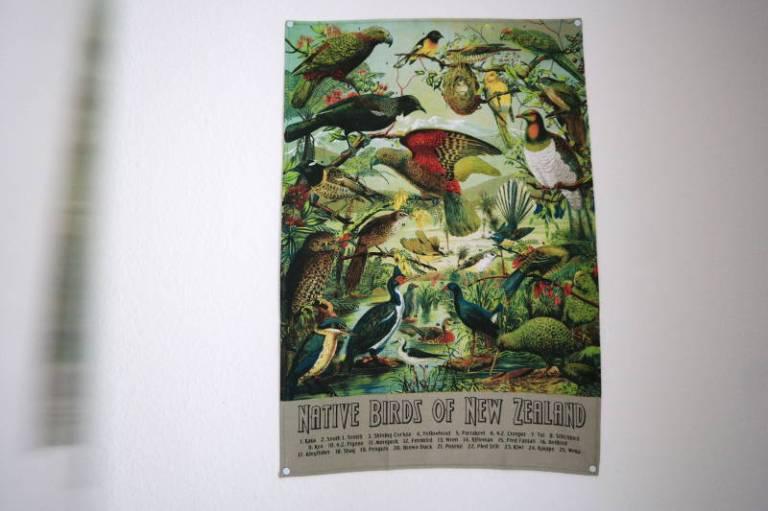 Geschirrtuch Birds of New Zealand