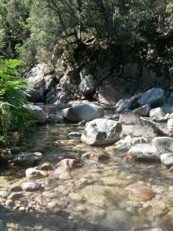 Klarer Fluss auf Korsika