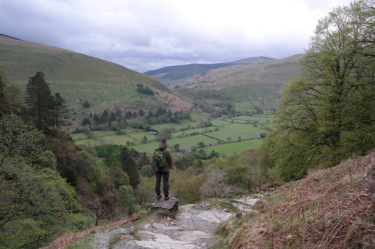 Blick auf grüne Wiesen im Snowdonia Nationalpark