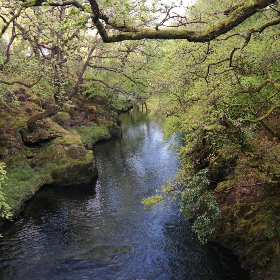 Klein-Neuseeland in Europa: Wales