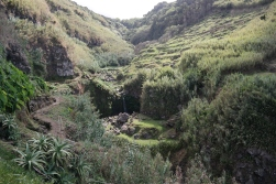 Grünes Sao Miguel, Azoren