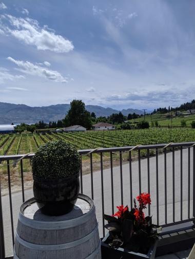Aussicht von der Volcanic Hills Estate Winery
