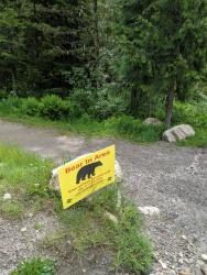 Warnschild: Ein Bär ist in der Gegend