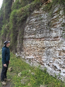 Tantanoola Caves Conservation Park