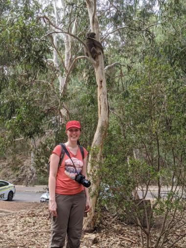 Franzi und der Koala