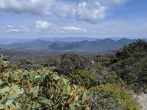 Mount William